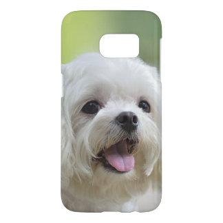 Weißer maltesischer Hund