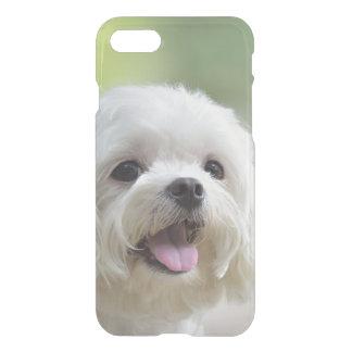 Weißer maltesischer Hund iPhone 8/7 Hülle