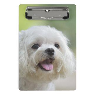 Weißer maltesischer Hund Mini Klemmbrett