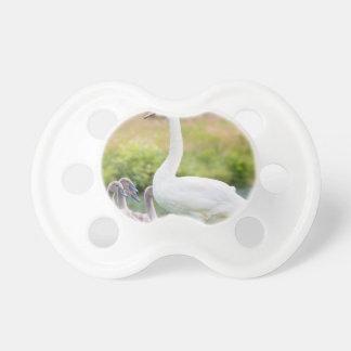 Weißer Mutterschwan mit jungen Küken Schnuller