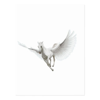 Weißer Pegasus Postkarte