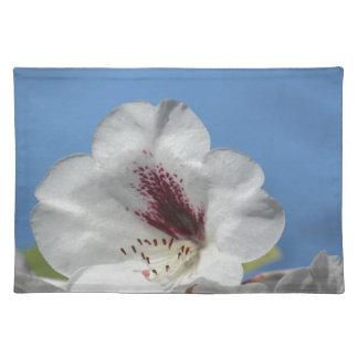 Weißer Rhododendron mit Burgunder Stofftischset