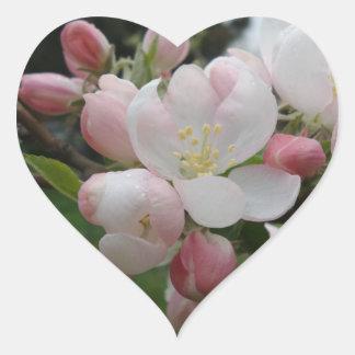 Weißer rosa Blumen-Herz-Aufkleber Herz-Aufkleber