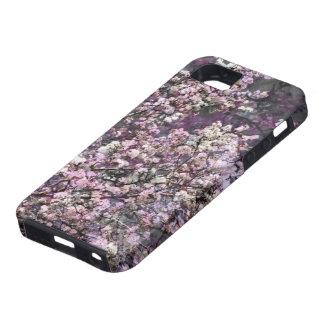 Weißer rosa Kirschblüten iPhone 5/5s Kasten Schutzhülle Fürs iPhone 5