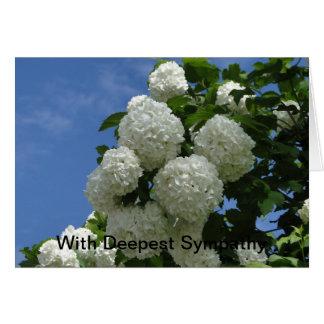 Weißer Schneeball Bush, Beileid Karte