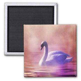 Weißer Schwan, der auf einen nebelhaften See Quadratischer Magnet
