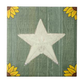 Weißer Stern auf grünem Holz Keramikfliese