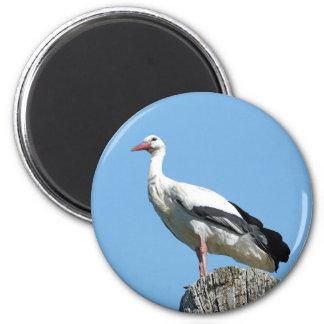 Weißer Storch 2,0 (Storch) Runder Magnet 5,1 Cm