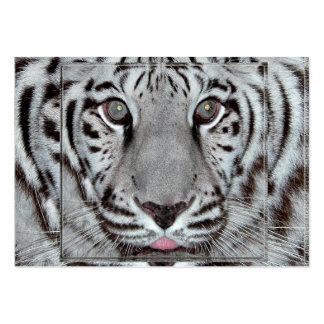 Weißer Tiger Mini-Visitenkarten