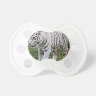 Weißer Tiger Schnuller