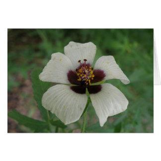 Weißer und lila Passionflower-kundenspezifische Karte