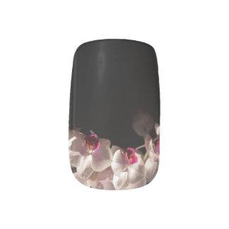 Weißer und rosa Orchideen-Stamm Minx Nagelkunst