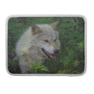 Weißer Wolf-grauer Wolf-wildes Tier-MacBook-Kasten Sleeve Für MacBooks