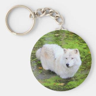Weißer Wolf Keychain Schlüsselanhänger