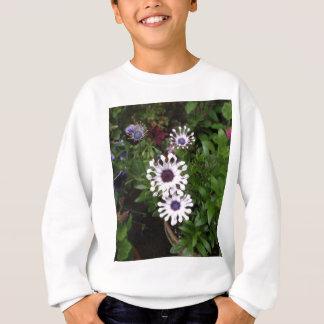 Weißes afrikanisches Gänseblümchen Sweatshirt