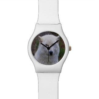 Weißes arktisches Wolf-Tier-Porträt-Geschenk Uhr