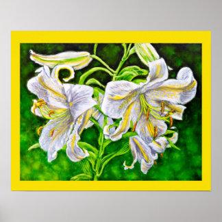 Weißes asiatisches Lilien-Plakat Poster