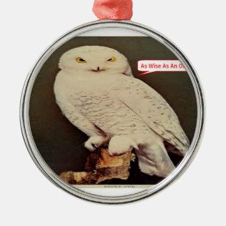 weißes Eulenzeichnen Silbernes Ornament