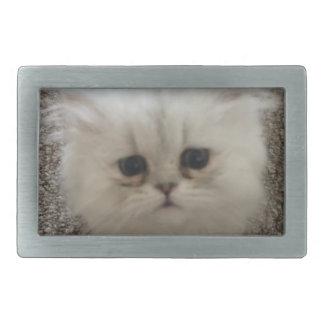 Weißes flaumiges Kätzchen der traurigen Augen, das Rechteckige Gürtelschnalle