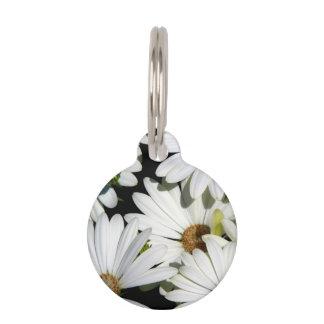 Weißes Gänseblümchen-Blumen Tiernamensmarke