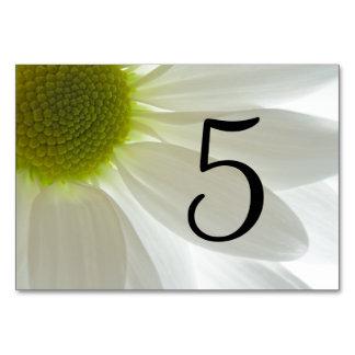 Weißes Gänseblümchen-Blumenblatt-Tischnummern Karte