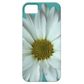 Weißes Gänseblümchen iPhone 5 Hülle