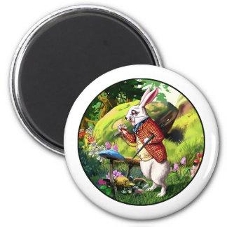 Weißes Kaninchen |Alice in Runder Magnet 5,7 Cm