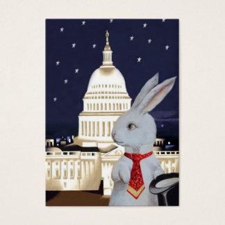 Weißes Kaninchen in Rom und in Paris - Visitenkarte