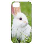 Weißes Kaninchen iPhone 5C Hüllen