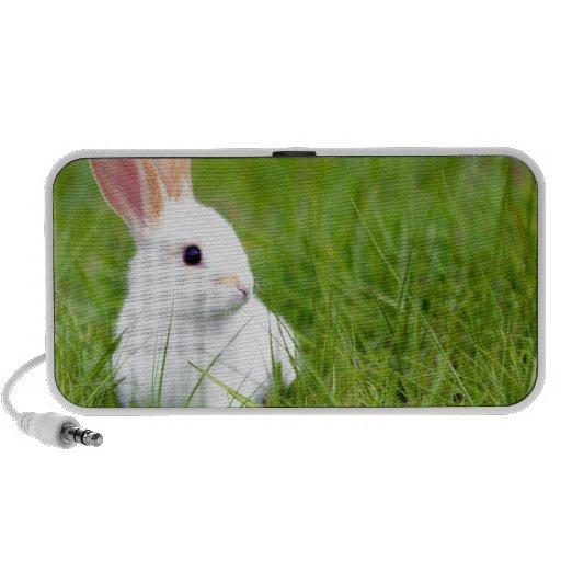 Weißes Kaninchen Reise Speaker