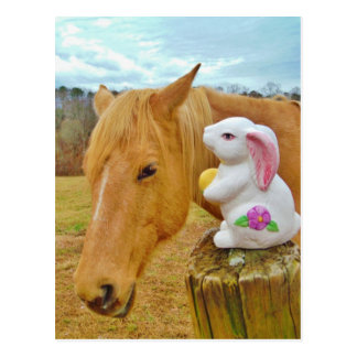 Weißes Kaninchen und blondes gelbes Pferd Postkarte
