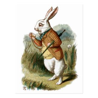 Weißes Kaninchen von der Alicen im Wunderland Postkarten