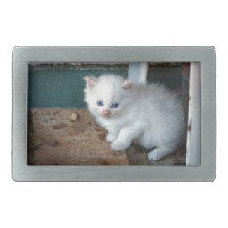 Weißes Kätzchen Rechteckige Gürtelschnalle