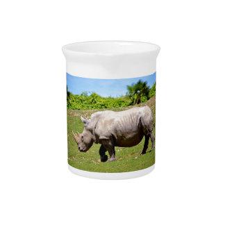 Weißes Nashorn, das auf Gras geht Krug