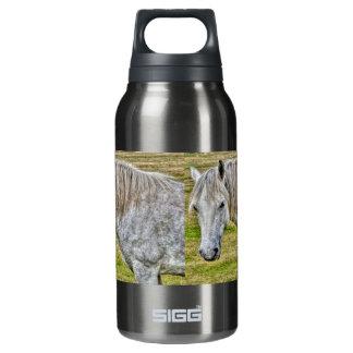 Weißes neues Waldpony-wildes Pferd Isolierte Flasche