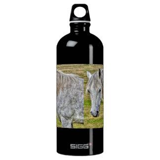 Weißes neues Waldpony-wildes Pferd Wasserflasche