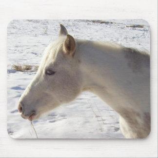 Weißes Pferd im Schnee Mousepads