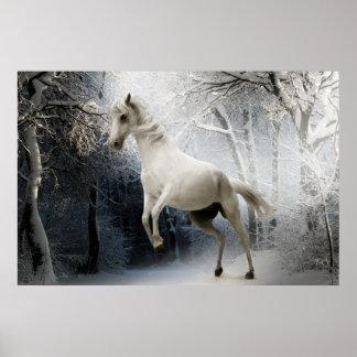 Weißes Pferd im Schnee postieren Poster