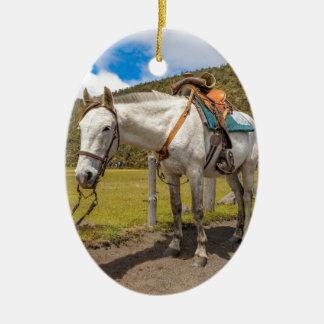 Weißes Pferd oben gebunden an Nationalpark Keramik Ornament