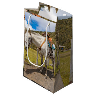 Weißes Pferd oben gebunden an Nationalpark Kleine Geschenktüte
