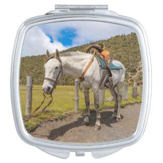 Weißes Pferd oben gebunden an Nationalpark Schminkspiegel