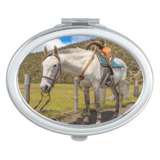 Weißes Pferd oben gebunden an Nationalpark Taschenspiegel