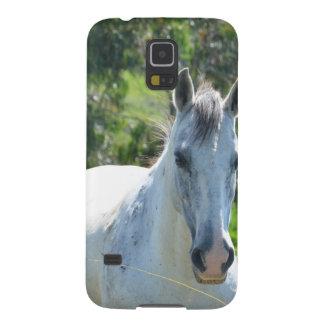 Weißes Pferd Samsung S5 Cover