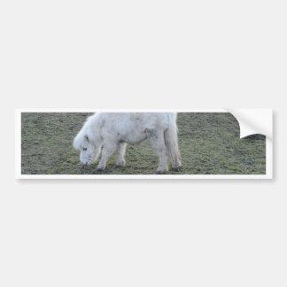 Weißes Pferdeminiaturgeschenke Autoaufkleber