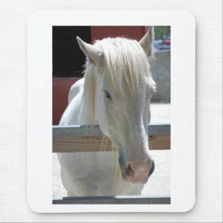 Weißes Pferdeschönheit Mauspads