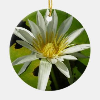 Weißes schöner Wasser-Garten der Wasserlilie-II Rundes Keramik Ornament