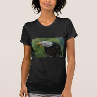 Weißes schwarzes Eagle während der Tageszeit T-Shirt