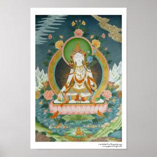 Weißes Tara-Plakat Poster