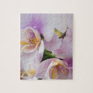 Weißes weiches Orchideen-Blühen Puzzle