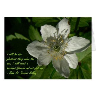 Weißes Wildblume Edna St. Vincent Mallay Grußkarte